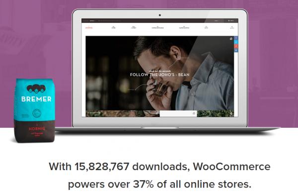 ошибка в WooCommerce