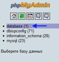Загруженная база данных из указанного файла