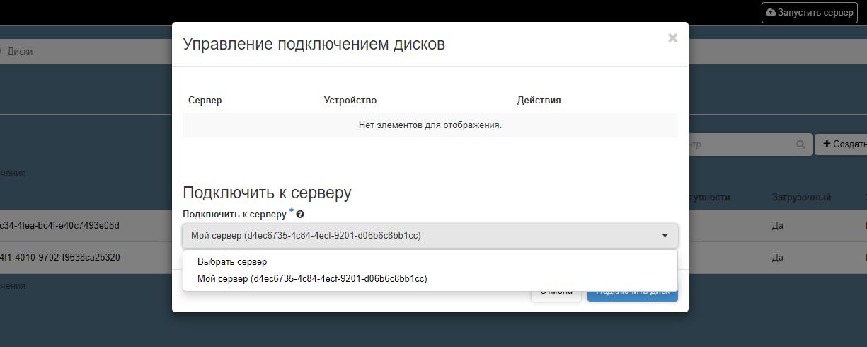 Всплывающее окно, которое повляется при выборе опции «Управление подключениями» в колонке «Действия» в разделе «Проект» – «Диски» – «Диски